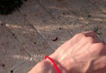red string